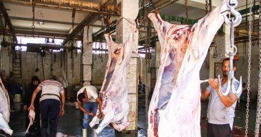 الزراعة تشن حملات تفتيشية بمنافذ بيع اللحوم والمجازر مع اقتراب عيد الأضحى