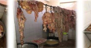 ضبط لحوم فاسدة قبل توزيعها على المواطنين في العيد بروض الفرج