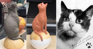 بعد 56 عاما.. إنشاء نصب تذكارى لأول قطة وصلت الفضاء
