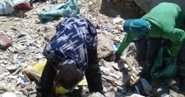 صور.. حملات لتطهير الشواطئ ومحاربة البناء المخالف وسط الإسكندرية