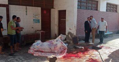 صور.. مواطن يستغل مدرسة ببنها ويذبح بها عجلا