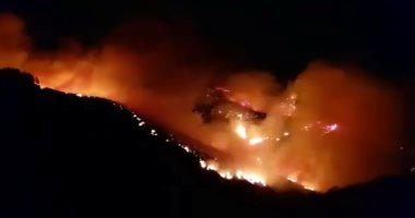 شاهد.. سبب حرائق الغابات الكبيرة فى جزر الكنارى