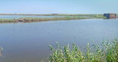صيادو بحيرة المنزلة: انتشار الصيد بالصعق الكهربائى يعرض الثروة السمكية للخطر