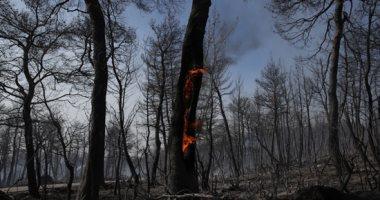 طائرات الإطفاء تشارك فى إخماد حريق جزيرة إيفا اليونانية