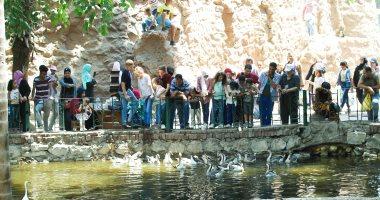 الأطفال يستمتعون بآخر أيام عيد الأضحى المبارك بحديقة الحيوان