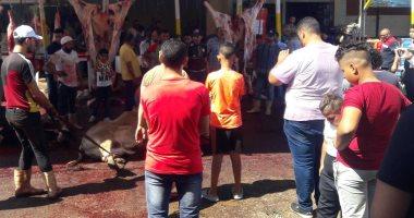 صور.. اضبط مخالفة.. شوارع بورسعيد تتحول لسلخانات لذبح الأضاحى