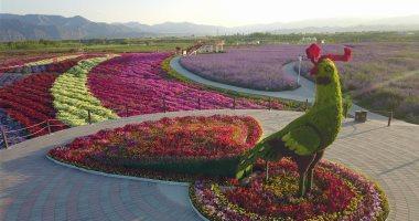 توقيع اتفاقيات فى معرض الصين- الدول العربية لدعم نقل التكنولوجيا الزراعية