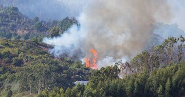 فرار مئات السكان جراء اشتعال 140 حريق غابات فى أستراليا