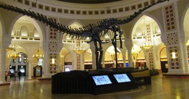 """""""هيكل عظمى"""" لديناصور للبيع فى مزاد بالإمارات بـ14 مليون درهم.. اعرف التفاصيل"""