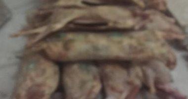 ضبط 2.5 طن لحوم فاسدة قبل بيعها للمواطنين بالإسكندرية