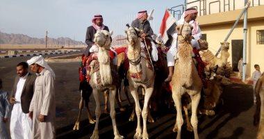 صور .. ملاك الإبل من شباب مصر يشاركون فى سباق ولى العهد بالسعودية