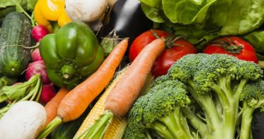 الزراعة: حملات على صوب الخضر المرخصة لمواجهة التغير المناخى.. اعرف التفاصيل
