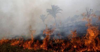 صور.. اتساع رقعة حرائق غابات الأمازون لتغطى مساحة تتجاوز 1.5 ألف هكتار