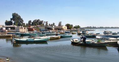 صور.. بحيرة التمساح أهم مناطق المجرى الملاحى لقناة السويس بمساحة 1900 فدان