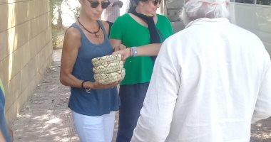 صور .. وفود سياحية تزور آثار تل العمارنة فى المنيا