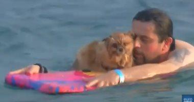 شاهد.. الكلاب تتنافس برفقة أصحابها فى سباق سنوى للسباحة بكرواتيا