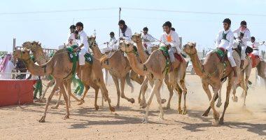 مصر تحقق مركزين متقدمين بسباق ولى العهد بالسعودية بالطائف