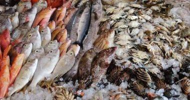 حجز تاجر لحين ورود تحريات المباحث حول واقعة ضبط 12 طن أسماك فاسدة فى السلام