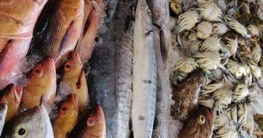 تعرف على أسعار الأسماك اليوم فى سوق العبور