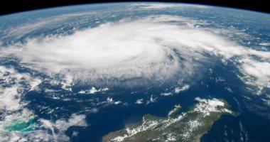 """شاهد.. عملية إنقاذ لـ """"بجعة"""" أثناء إعصار دوريان بالولايات المتحدة"""