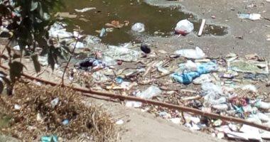 شكوى من انتشار القمامة والأوبئة فى 6 أكتوبر بمنطقة إسكان الشباب