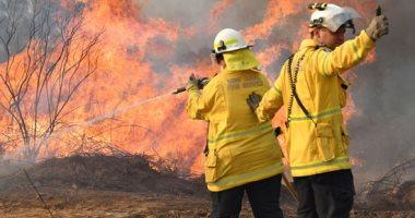 صور.. رجال الإطفاء يكافحون حرائق الغابات فى أستراليا