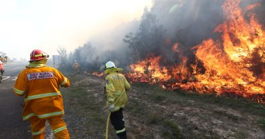 رجال الإطفاء يحاولون السيطرة على حرائق الغابات فى انجورى الأسترالية
