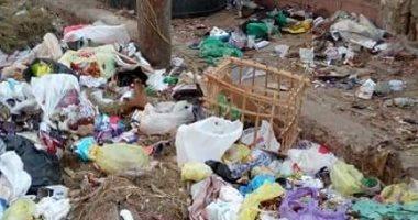 اضبط مخالفة.. تراكم أكوام القمامة بجوار أسوار المدارس فى دمياط