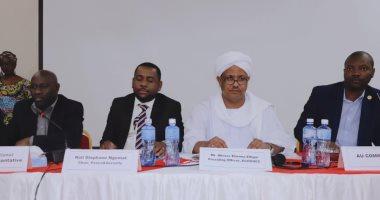 المجلس الاقتصادى للاتحاد الأفريقى يبحث  إسكات الأسلحة فى أفريقيا 2020   -