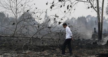 صور.. الرئيس الإندونيسى يزور مقاطعة متضررة جراء حرائق الغابات