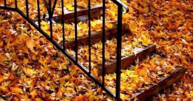 فصل الخريف يبدأ 22 سبتمبر