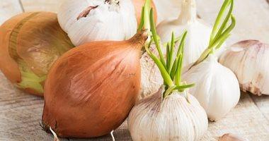 الزراعة: ارتفاع صادرات البصل والثوم لـ 636 ألف طن بزيادة 240 ألف طن