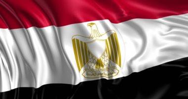 لو أجنبى وعايز تتجنس بالجنسية المصرية.. اعرف 4 حالات للحصول عليها