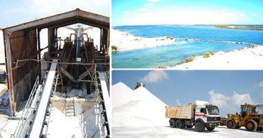 """""""الملح المصري"""" على موائد أفريقيا.. وتوقعات بارتفاع الصادرات 2021 بعد تطوير البحيرات"""