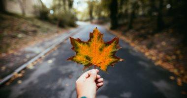 7 نصائح لو ناوى تسافر فى الخريف.. ابعد عن الغابات واستمتع بجو الريف