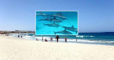 50 صورة طبيعية تصف جمال شواطئ مرسى علم