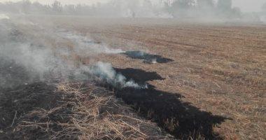 اضبط مخالفة.. حرق قش الأرز نهارا على طريق المحلة زفتى بالغربية.. صور