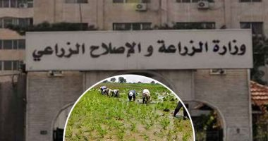 الزراعة تفند 5 شائعات أبرزهم تلف المحاصيل الزراعية (الشتوية)  -