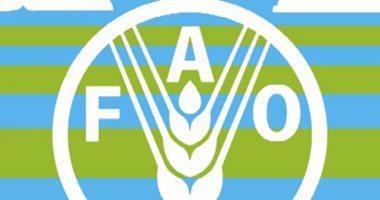 الفاو: تأثير كورونا على التجارة العالمية غير مسبوق ويُضر يالإمداد الغذائي