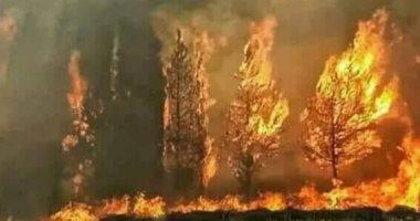 لبنان يحترق.. ذعر بين اللبنانيين بسبب حرائق الغابات وطوارئ للسيطرة عليها