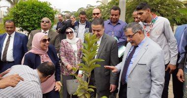 """صور.. تدشين مبادرة """"هنجملها"""" بكلية التربية جامعة بنها لزراعة 2500 شجرة"""