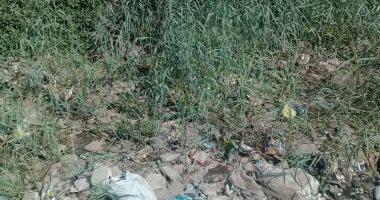شكوى من انتشار القمامة بقرية الحيبة فى بنى سويف