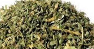أمن القليوبية يضبط 19 تاجر مخدرات بقليوب والعبور وبنها