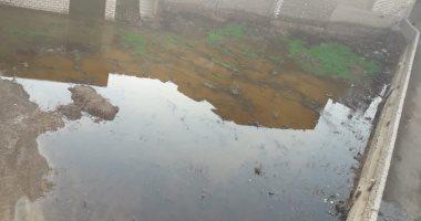شكوى انتشار مياه الصرف الصحى بقريةمنشاه أبو مليح بنى سويف