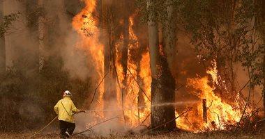 توقعات بندرة الأمطار تنذر باستمرار حرائق الغابات فى أستراليا