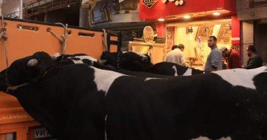 انخفاض أسعار اللحوم بدمياط لتصل إلى 65 جنيها