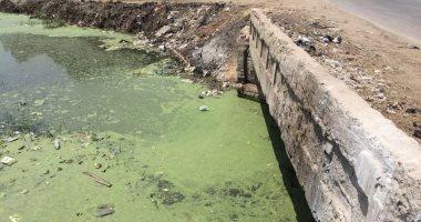 القومية لمياه الشرب ردًا على شكوى نائب: إدارج قرية طوخ الخيل بخطة الصرف الصحى