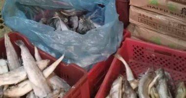 صور.. ضبط 1780 كيلو أسماك فاسدة بثلاجة فى قليوب