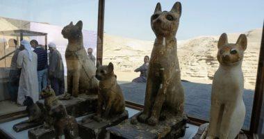 الجارديان تبرز اكتشاف سقارة النادر: يعكس اهتمام قدماء المصريين بالحيوانات
