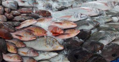 """""""الزراعة"""": لجان بيطرية بأماكن عرض وبيع اللحوم والأسماك.. اعرف التفاصيل"""